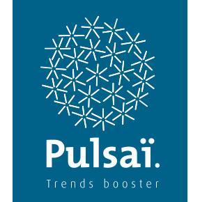 pulsai - site e-commerce - logo